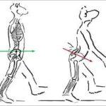 rehabilitacia orac sluzby fyzioterapie